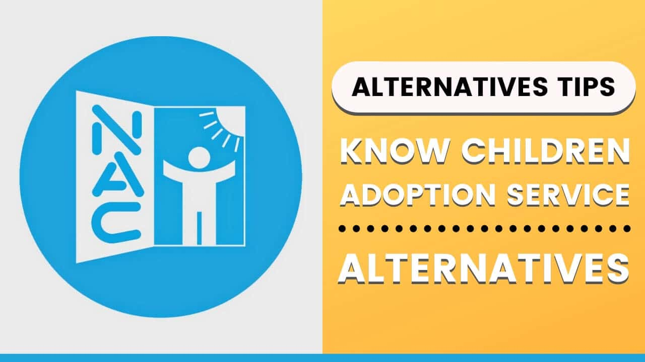 Know About New Alternatives For Children Adoption Service