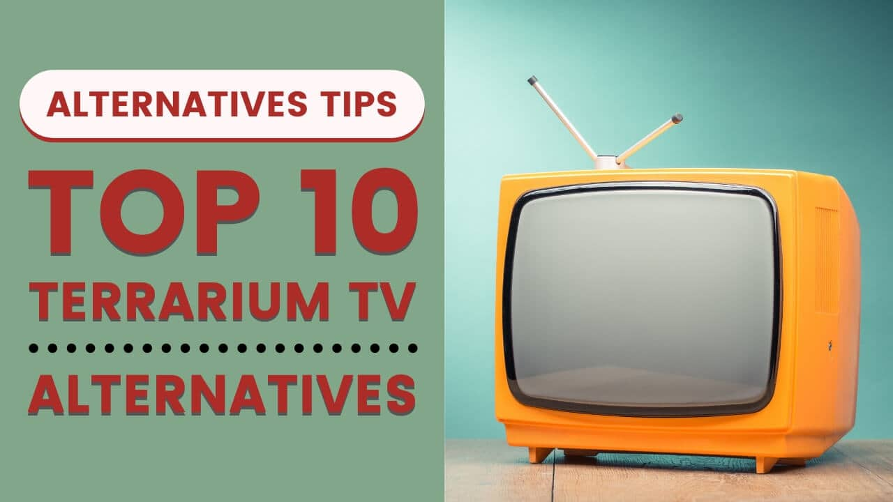 Top 10 Terrarium TV Alternatives